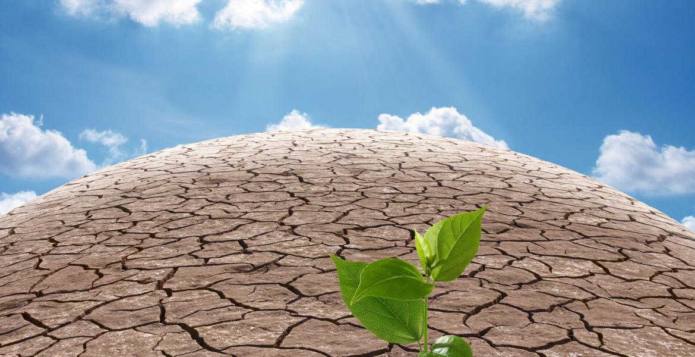 photo of arid land surface