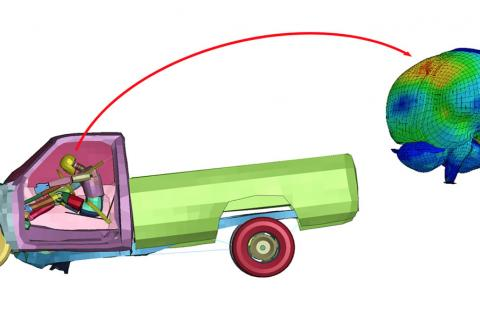 A colorful simulation of a truck running into a wall with a person inside. On the right side of the image is a zoomed-in version of the driver's brain.